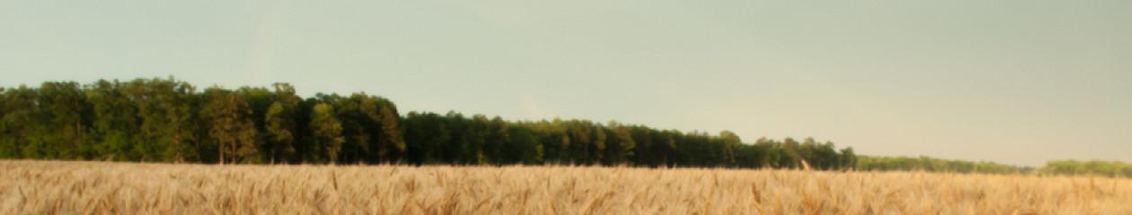 Owens Farm Supply
